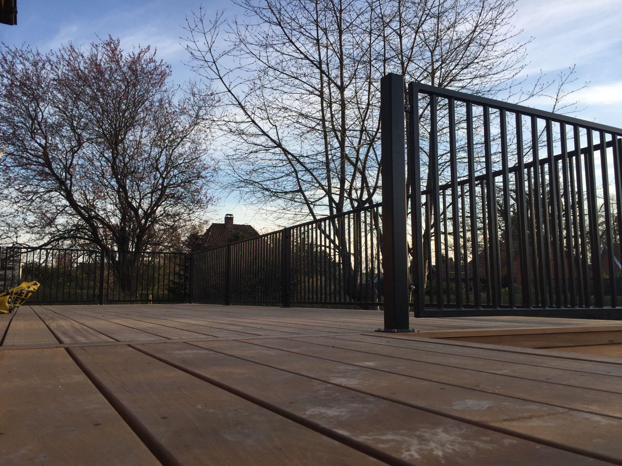 Smedjernshegn stående på terrasse set nedefra